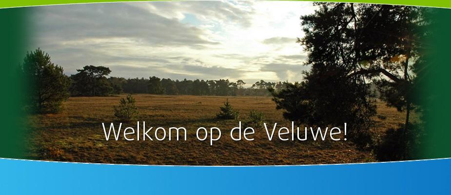 Welkom op de Veluwe